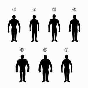 男性の体型シルエット
